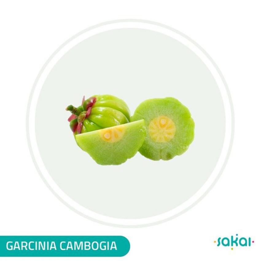 GARCINIA CAMBOGIA SAKAI 60 HCA 100 COMPRIMIDOS